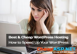 SEO Tips from CheapHostingASP.NET – How to Speed Up Your WordPress Hosting and Get a Higher Google Rank